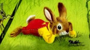 Soy un conejo 4
